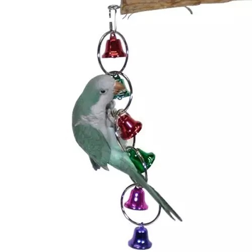 A105 Bell Loops – Medium bird toys